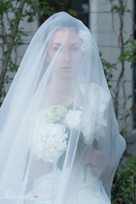 Brud Julia 1000-8139.jpg